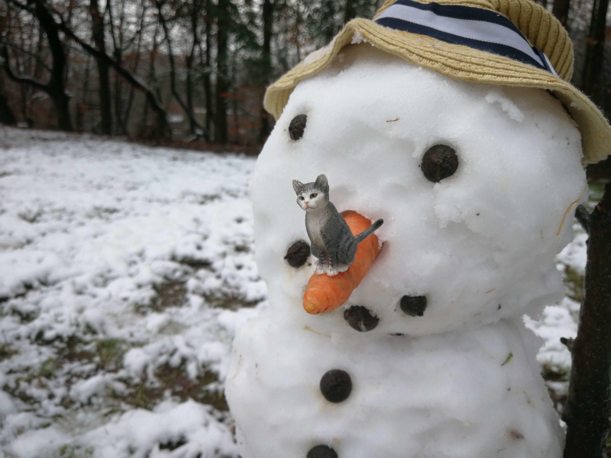 Schleich-Katze sitzt auf dem Schneemann